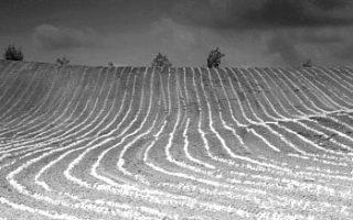 Fekete-fehér fotó GIMP képszerkesztőben