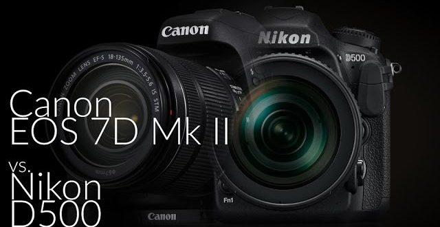 Ketrecharc: Canon EOS 7D Mark II vs. Nikon D500