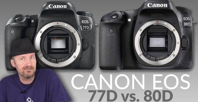 Canon EOS 77D vs  80D fényképezőgép összehasonlítás