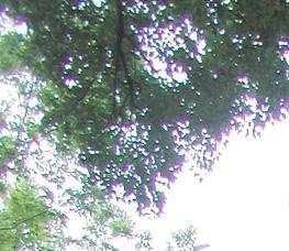 Színhiba (kromatikus aberráció) eltávolítása I. Photoshopban 1