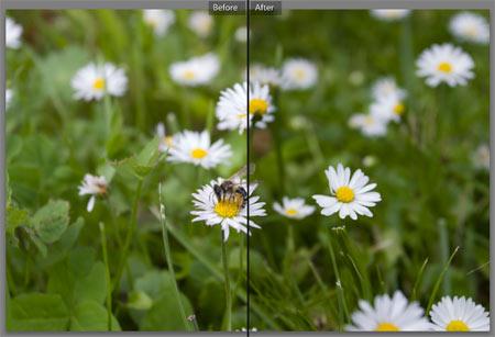 Adobe Lightroom - Tónuskorrekció 8.