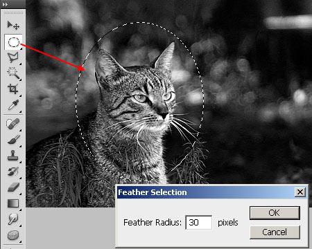 Zoom effektus Photoshopban 2.