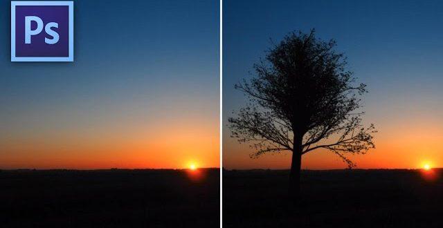 """Hogyan """"növesszünk"""" fát a képre Photoshopban?"""